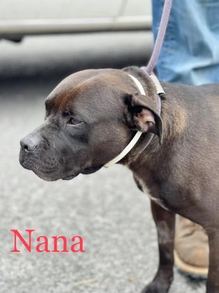 Nana detail page