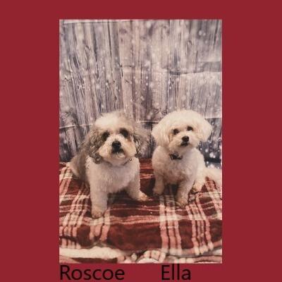 Roscoe 1