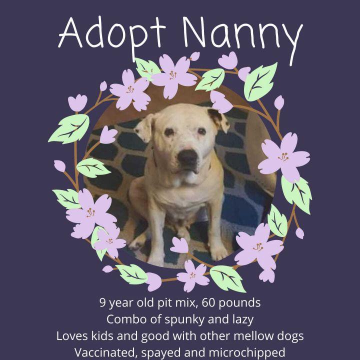 Nanny 5
