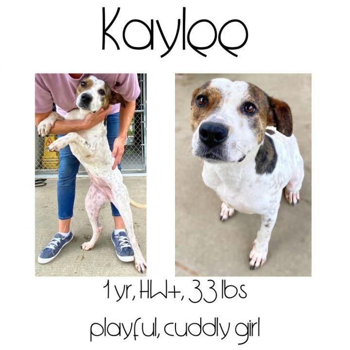 Kaylee 1