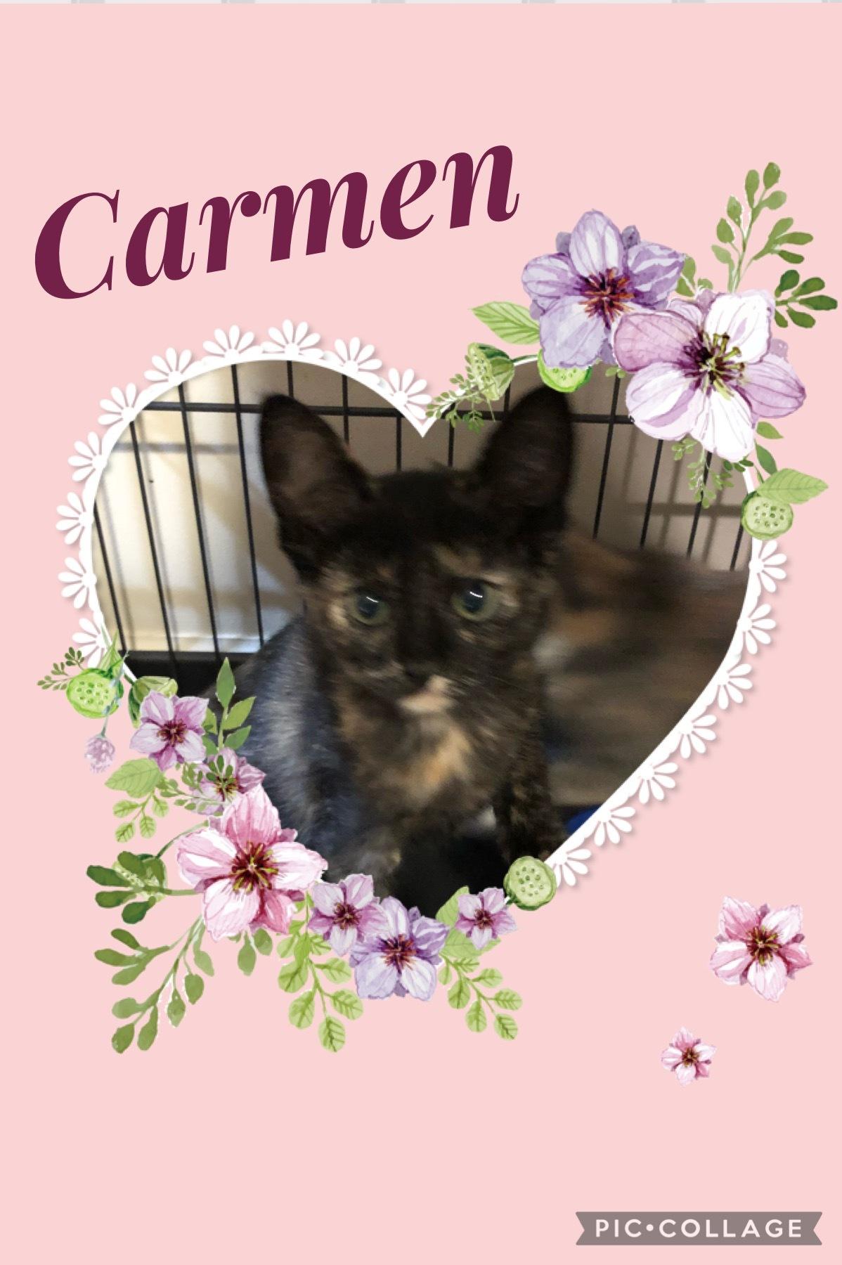 Carmen A 3892 detail page