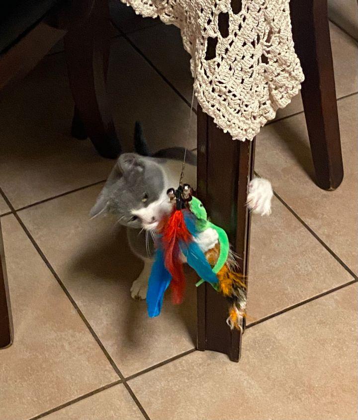 Katy and Olaf 4