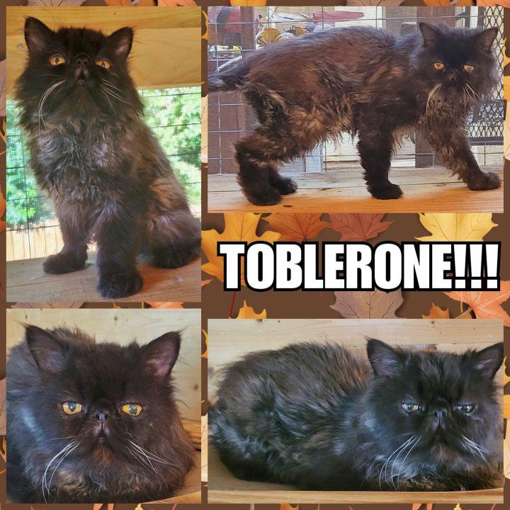 Toblerone  5