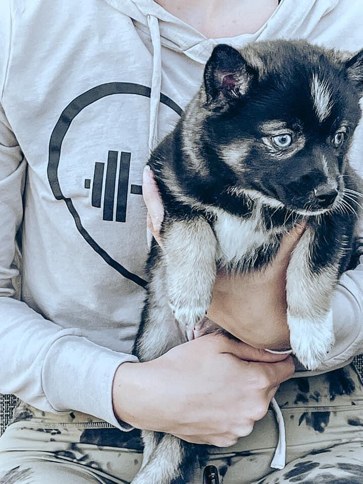 Tiara-adoption pending 3