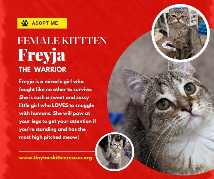 Freyja 1